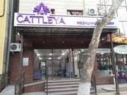 Услуги косметологов в Ташкенте от медицинского центра «CATTLEYA»